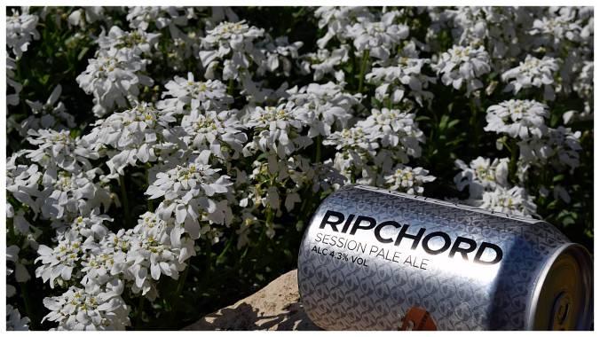 Ripchord2